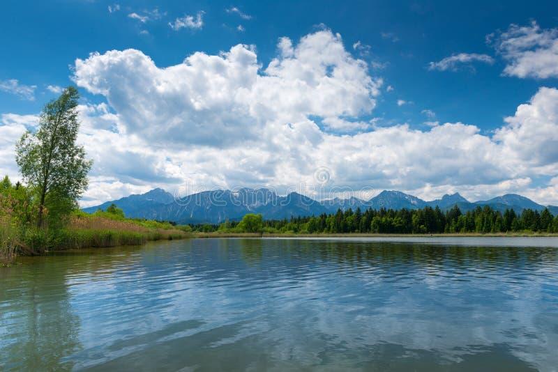 El lago hopfen la ve con las cañas imagenes de archivo