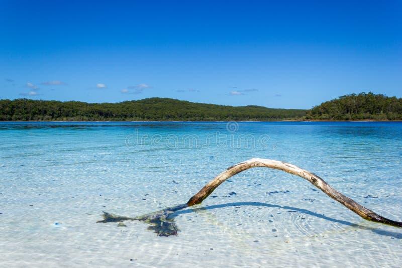 El lago Mackenzie en Fraser Island de la sol de Queensland es un lago de agua dulce hermoso popular entre los turistas que visita imagen de archivo