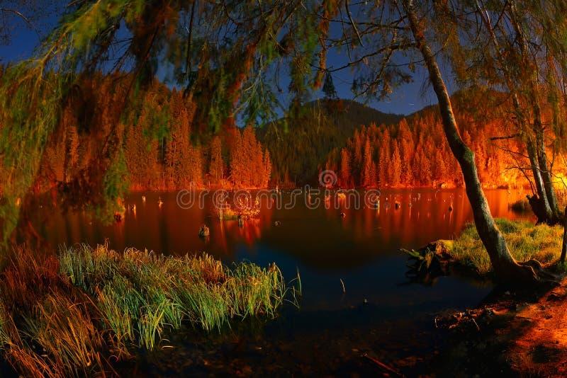 El lago rojo o lago killer, Cárpatos del este, Rumania foto de archivo