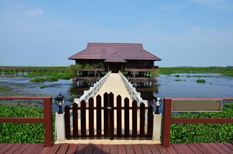 El lago y las aves acuáticas Thale Noi parquean en la provincia de Phatthalung Tailandia fotos de archivo