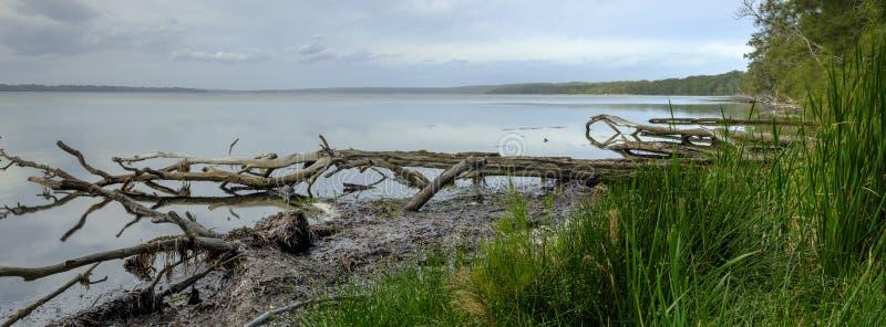 El lavabo de San Jorge de la bahía cercana de la abundancia, parque nacional de Boodero, Jervis Bay, ACTO, Australia imagen de archivo