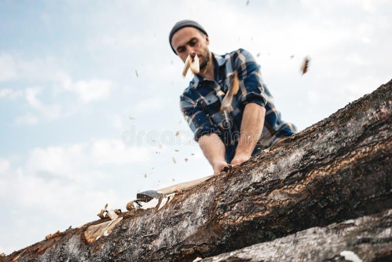 El leñador fuerte y brutal con el hacha en sus manos taja el árbol en el bosque, pedazos de madera vuela aparte foto de archivo libre de regalías