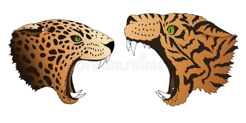 El leopardo hambriento y el tigre del vector quieren comer colorido despredador de las cabezas aislados libre illustration