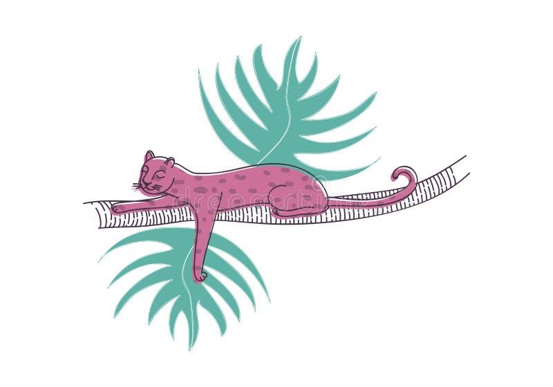 El leopardo rosado duerme en la rama de la palmera Gato salvaje grande con el cuerpo manchado Tema de la fauna Diseño dibujado ma ilustración del vector
