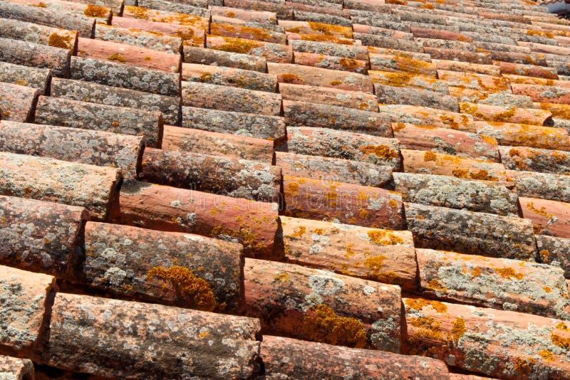 El liquen cubrió las tejas de tejado españolas de la terracota foto de archivo libre de regalías
