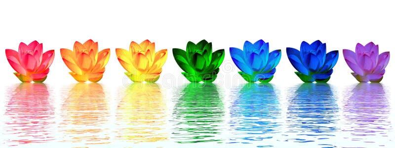 El lirio florece chakras ilustración del vector