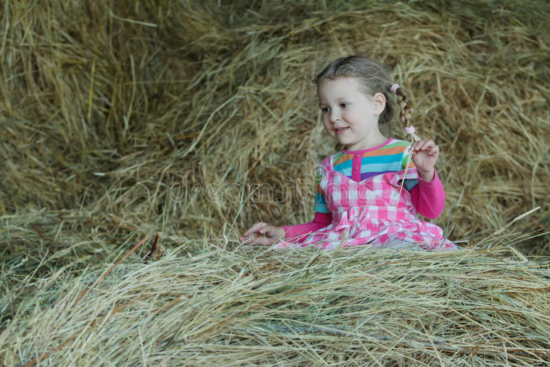El llevar feliz de la muchacha del preescolar rayado y tela escocesa que juega en henil de la granja del país entre el heno flojo imagenes de archivo