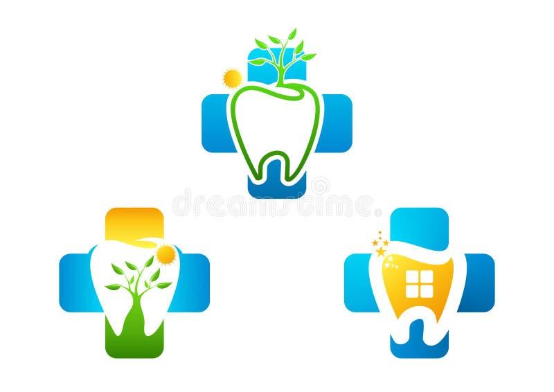 El logotipo crece dental sano ilustración del vector