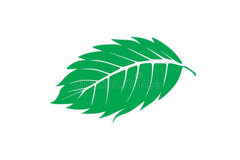 El logotipo de la hoja de la menta diseña la inspiración aislado en el fondo blanco ilustración del vector