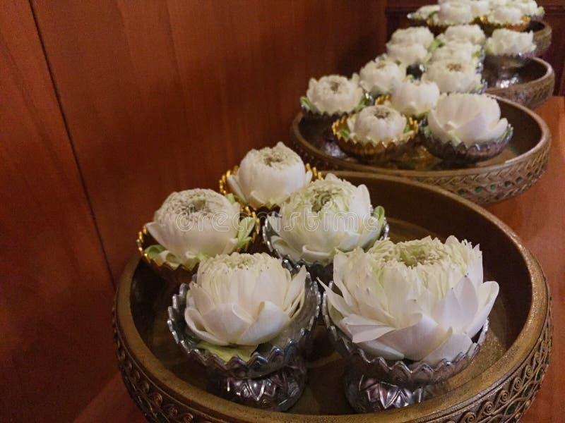 El loto blanco ruega para Buda en el cuenco foto de archivo