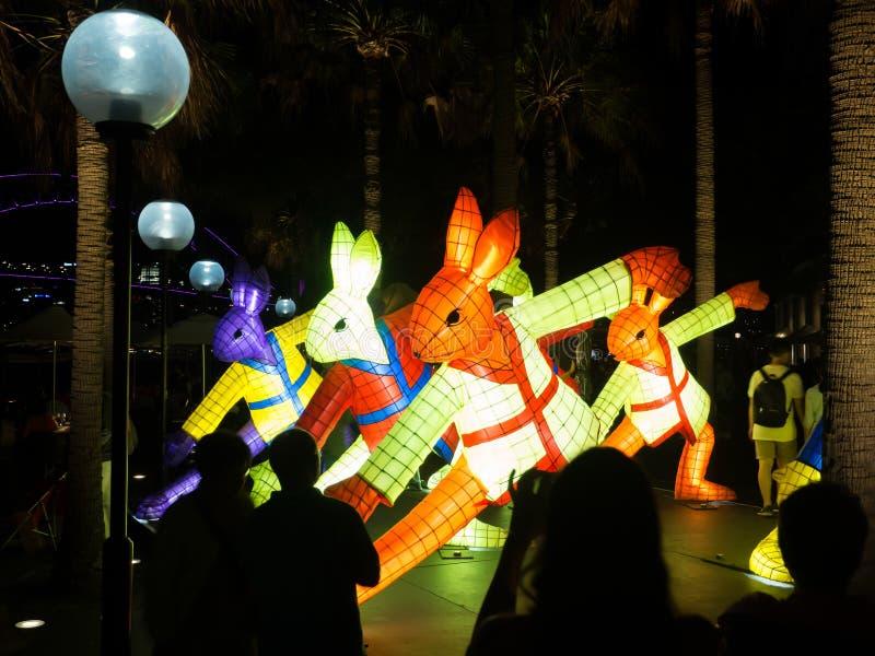 El ` lunar de la linterna que el ` del conejo es símbolo del zodiaco del conejo será iluminado de oscuridad en Quay circular por  fotos de archivo libres de regalías
