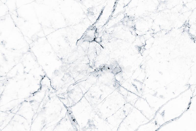 El m rmol blanco model el fondo de la textura m rmol for Textura de marmol blanco