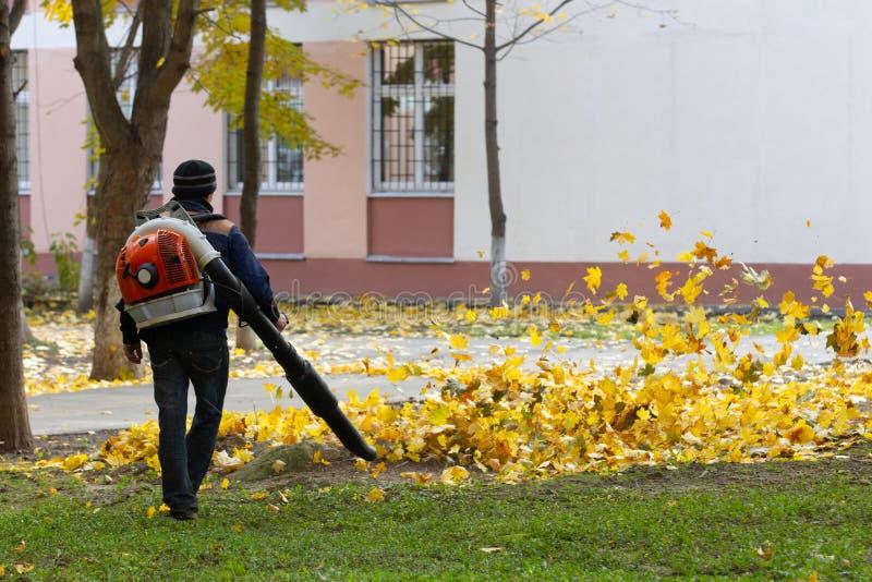 El más limpio barre las hojas desaparecidas de un césped foto de archivo libre de regalías