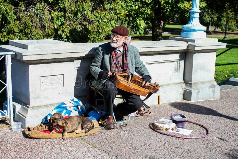 El músico se realiza en los jardines públicos de Boston fotos de archivo