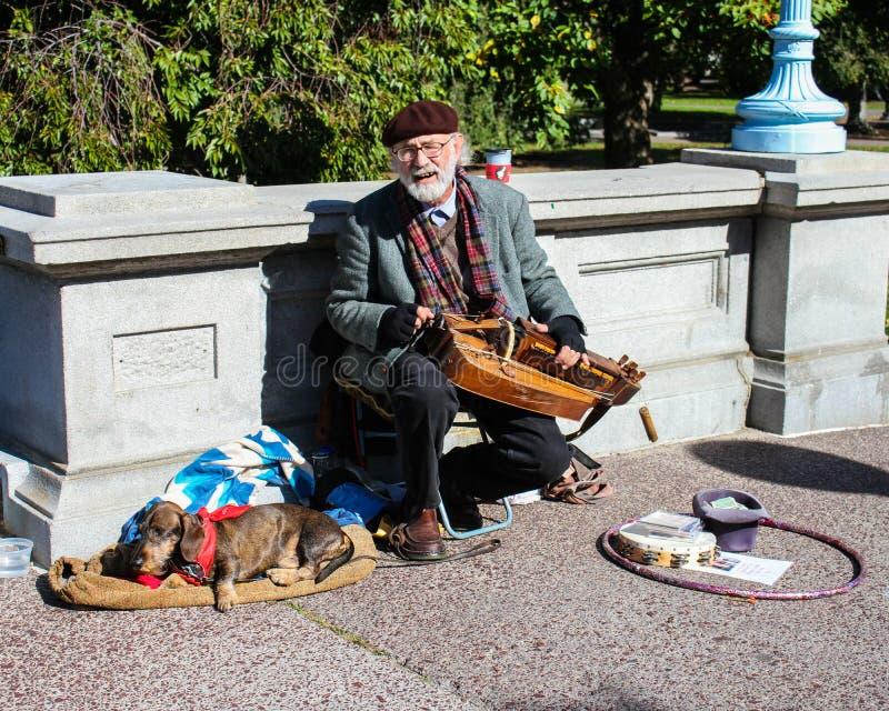 El músico se realiza en los jardines públicos de Boston fotos de archivo libres de regalías