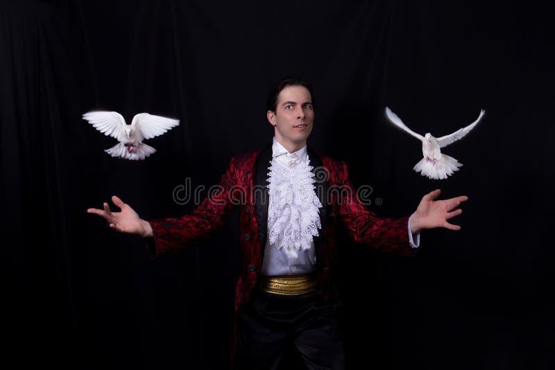 El mago con dos palomas blancas que vuelan imagen de archivo