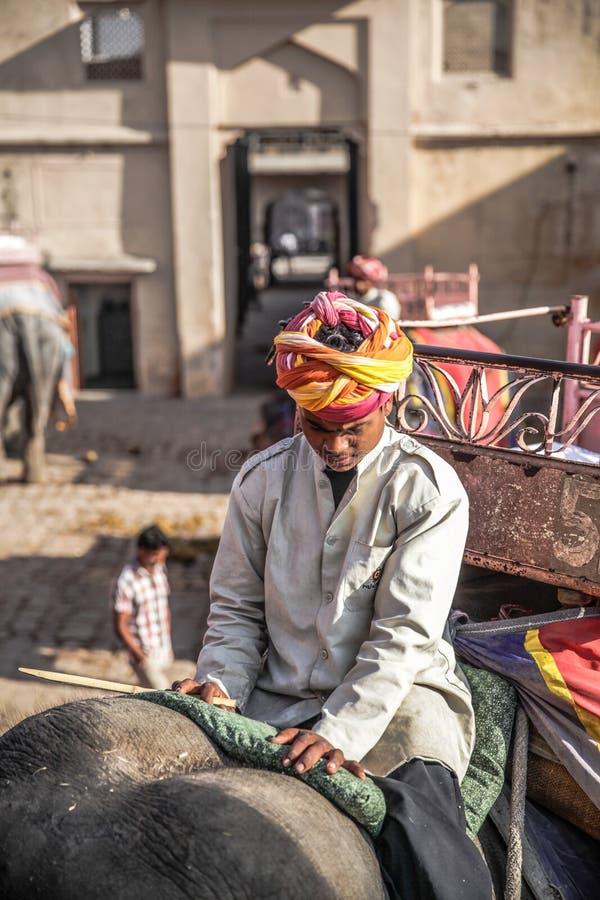 El mahout del indio en elefante en Amber Palace, Rajasthán, la India imagen de archivo
