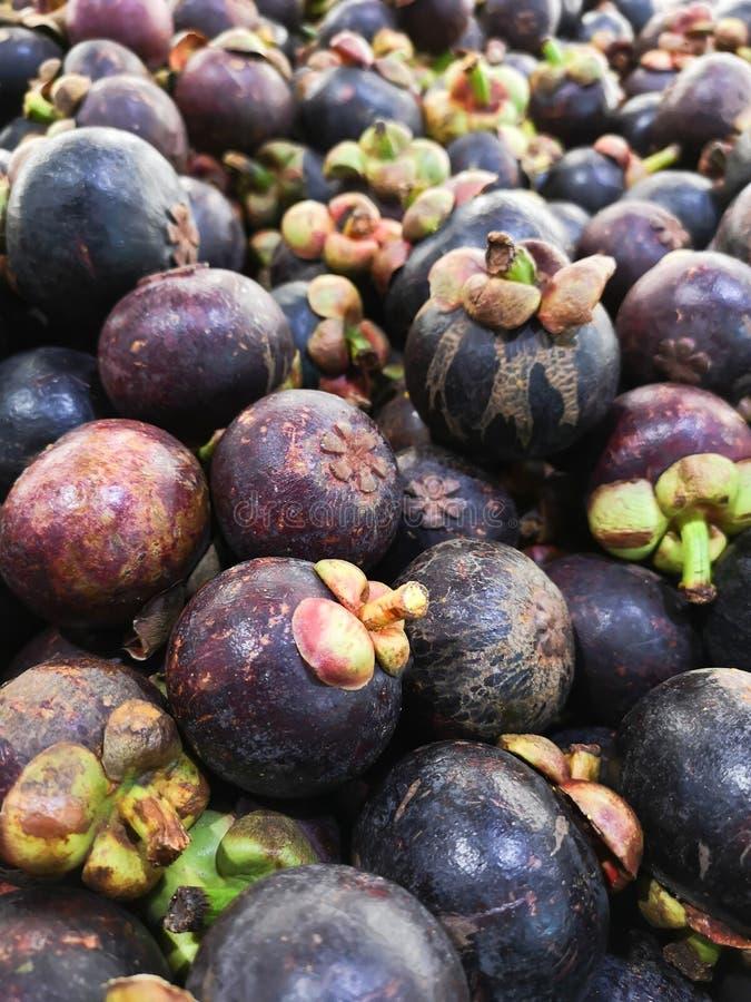 El mangost?n, fruta asi?tica, est? fresco fotografía de archivo libre de regalías