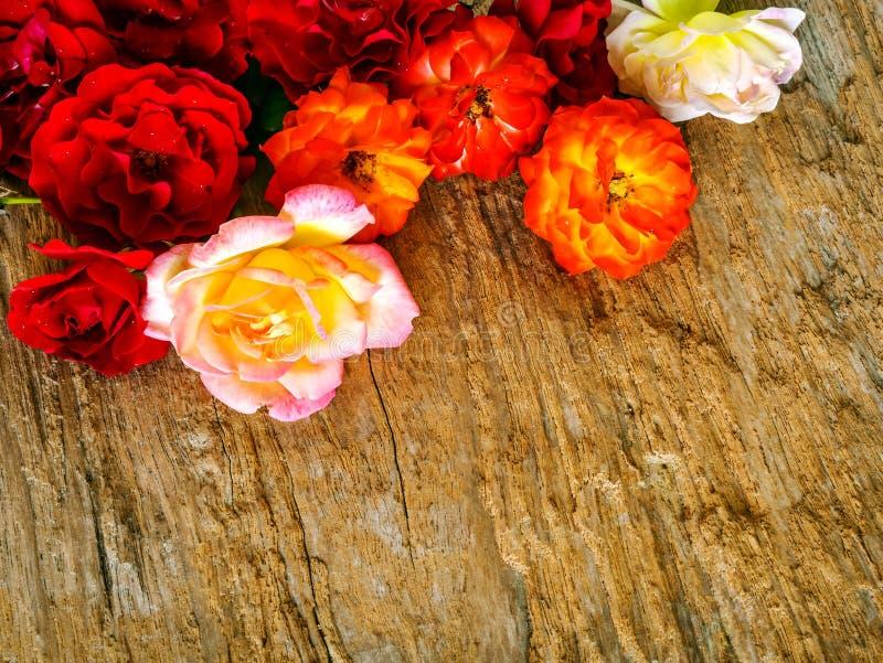 El manojo de rosas recogió en fondo de madera rústico imagenes de archivo