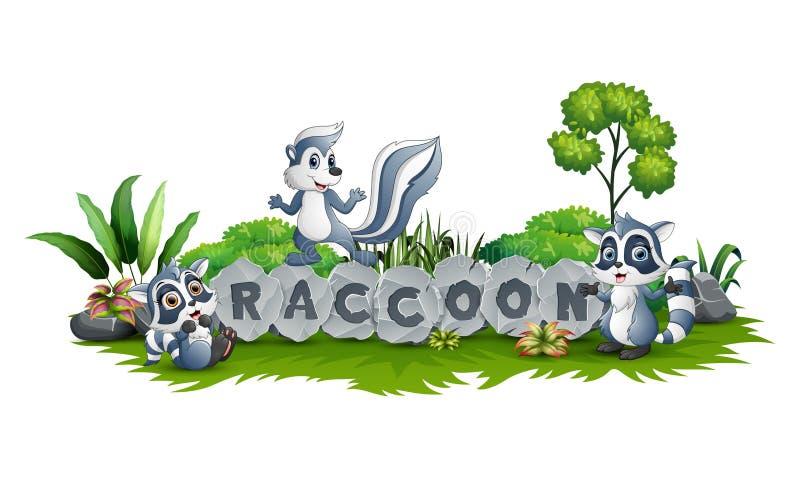 El mapache tres está jugando junto en jardín stock de ilustración