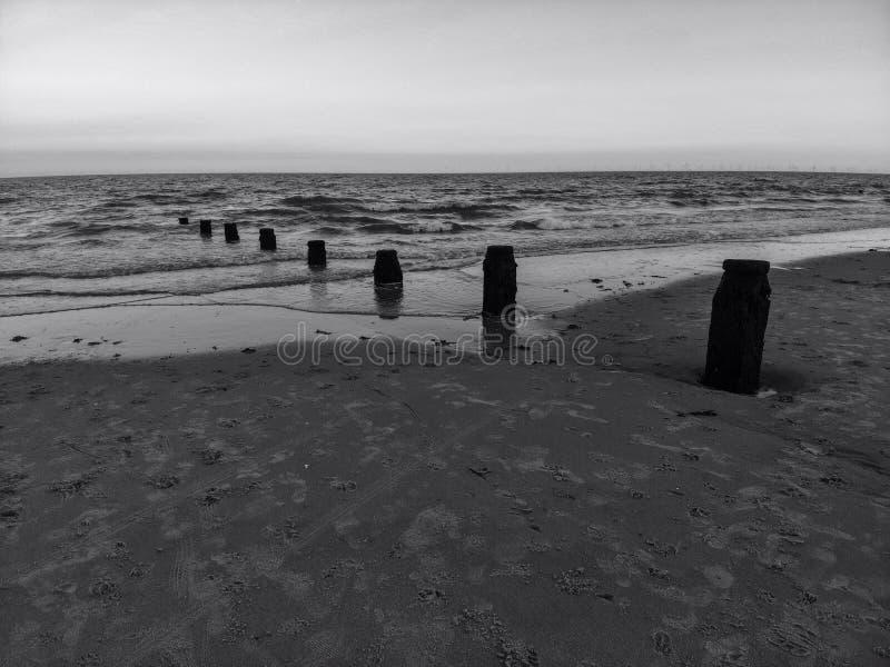 El mar blanco y negro de la ingle agita el agua de la arena del océano del mar foto de archivo libre de regalías