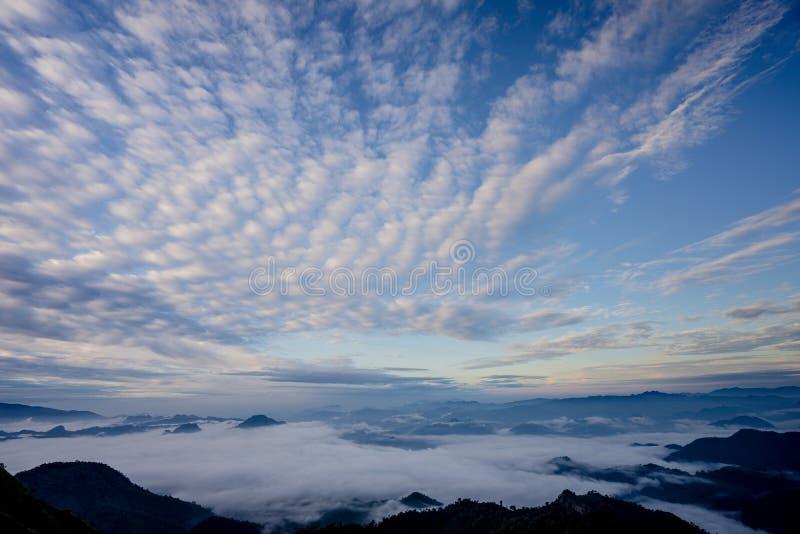 El mar de la niebla con los bosques y el valle de las montañas, hermoso en el paisaje de la naturaleza, Doi Thule, provincia de T foto de archivo libre de regalías
