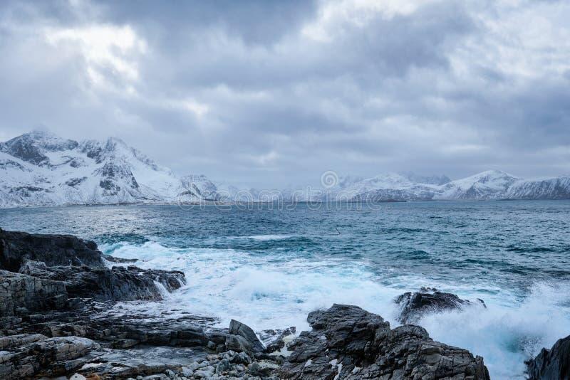 El mar noruego agita en la costa rocosa de las islas de Lofoten, Noruega imágenes de archivo libres de regalías
