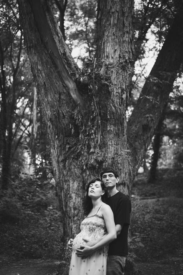 El marido y la esposa embarazada se est?n colocando cerca de un ?rbol grande, sus ojos son cerrados, el marido est? abrazando a l foto de archivo libre de regalías