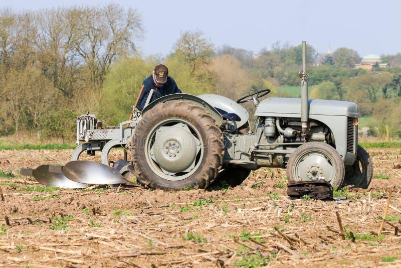El massey gris viejo fergusen el tractor en el partido de arado foto de archivo
