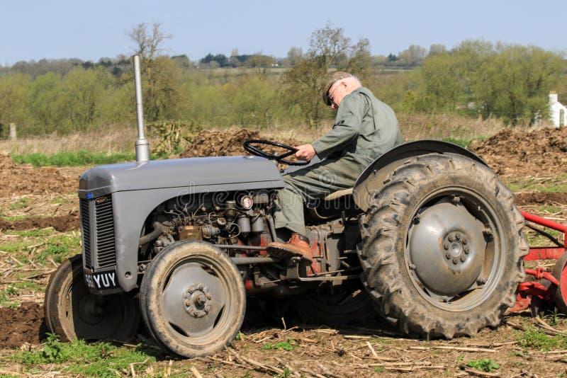 El massey gris viejo fergusen el tractor en el partido de arado foto de archivo libre de regalías