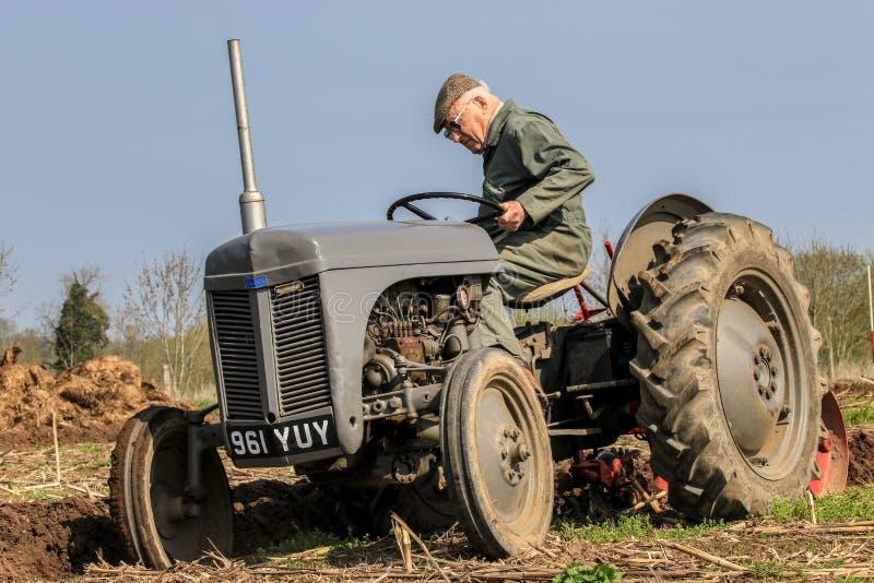 El massey gris viejo fergusen el tractor en el partido de arado fotos de archivo libres de regalías