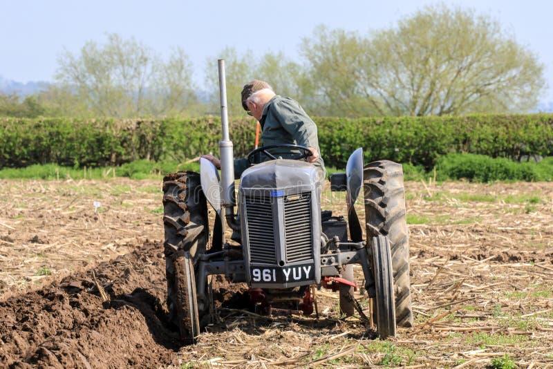 El massey gris viejo fergusen el tractor en el partido de arado imágenes de archivo libres de regalías