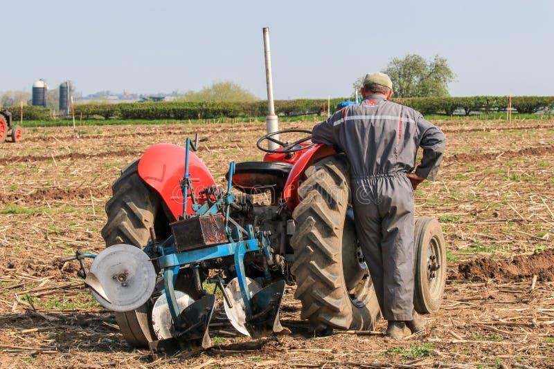 El massey rojo viejo fergusen el tractor en el partido de arado foto de archivo