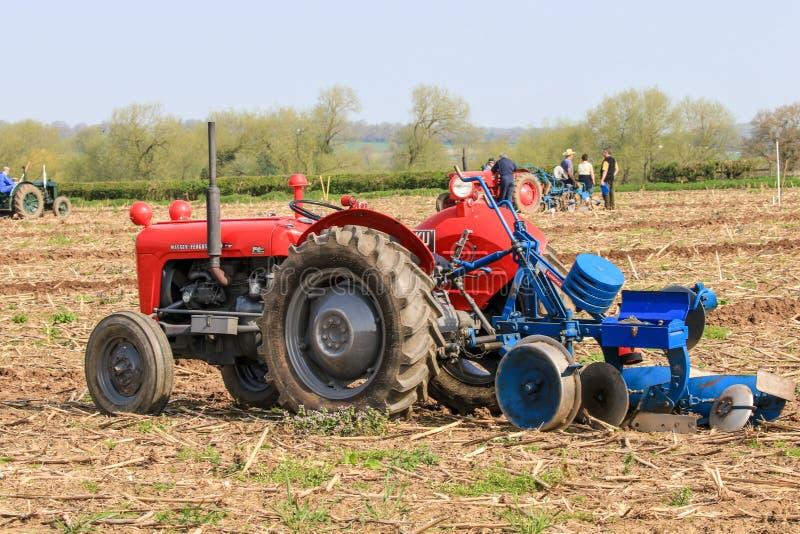 El massey rojo viejo fergusen el tractor en el partido de arado imagen de archivo