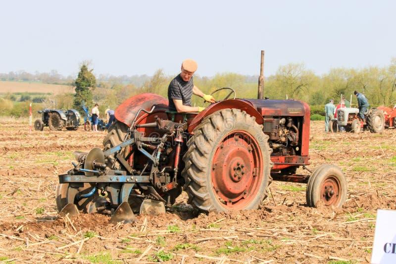El massey rojo viejo fergusen el tractor en el partido de arado fotografía de archivo