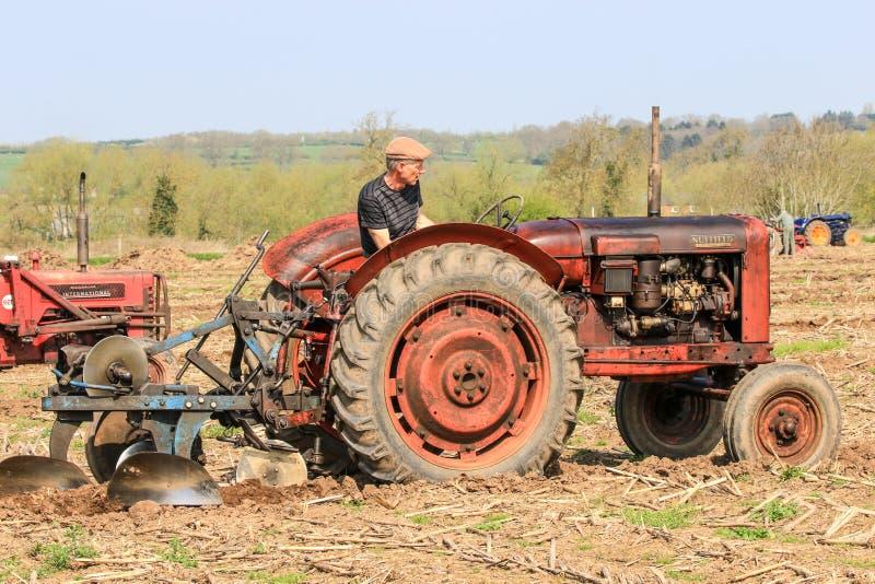 El massey rojo viejo fergusen el tractor en el partido de arado imagenes de archivo