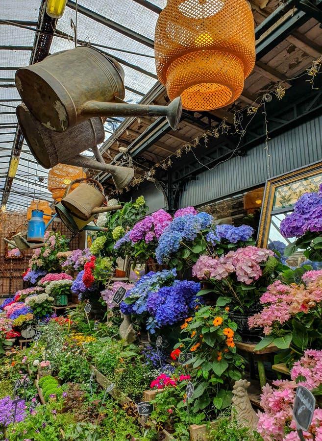 El mercado de la flor en París localizó en el Ile de la Cite, entre la capilla de la catedral y de Sainte-Chapelle de Notre-Dame fotos de archivo libres de regalías