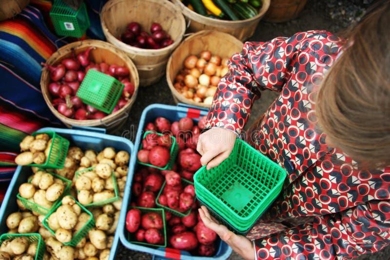 El mercado/el niño del granjero con las patatas, cebollas imagen de archivo libre de regalías