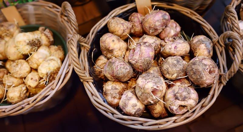 El mercado famoso Bloemenmarkt de la flor de Amsterdam Bulbos de narcisos y de jacintos fotografía de archivo libre de regalías