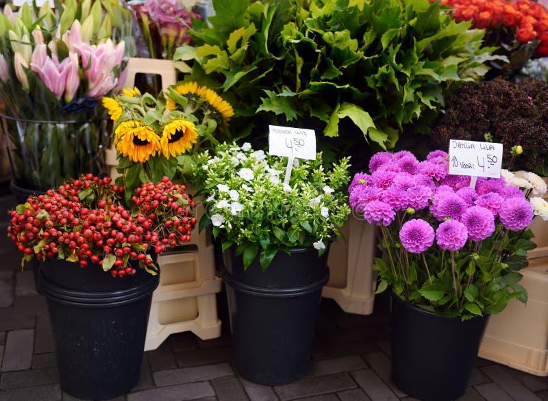 El mercado famoso Bloemenmarkt de la flor de Amsterdam Dalias, polemonio, girasoles fotos de archivo libres de regalías
