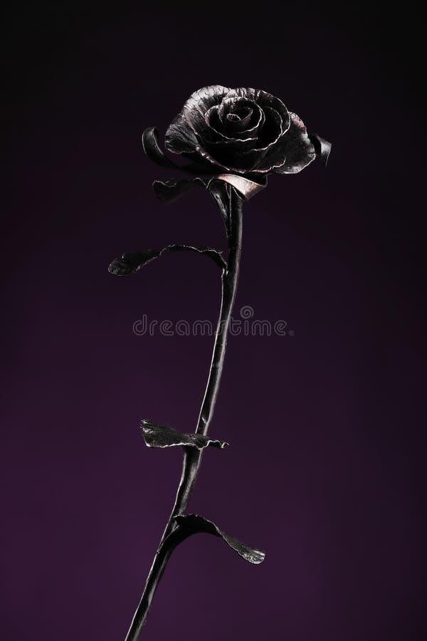 El metal negro subió en fondo del color oscuro-violeta imagen de archivo libre de regalías