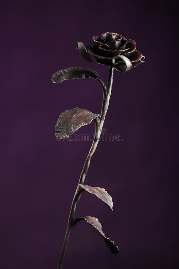 El metal negro subió en fondo del color violeta imágenes de archivo libres de regalías
