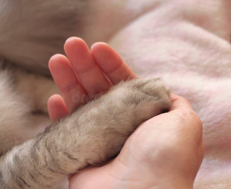 El mi cuidar humano para mí
