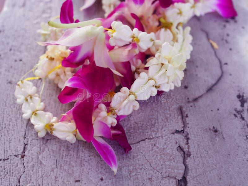 El Milkweed indio gigante de la pequeña flor real fresca blanca de la corona, Swallowwort y la guirnalda local tailandesa púrpura imagen de archivo