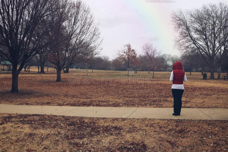 El mirar fijamente el horizonte en un parque fotografía de archivo