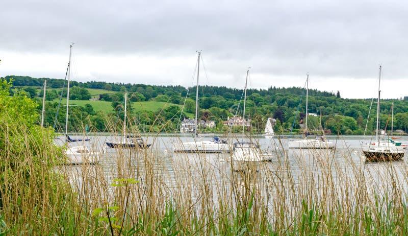 El mirar a través de hierbas los barcos en el lago Windermere foto de archivo libre de regalías