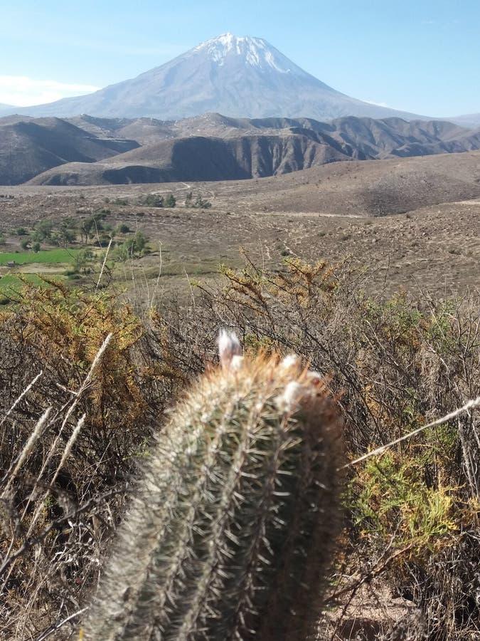 El Misti стоковое изображение