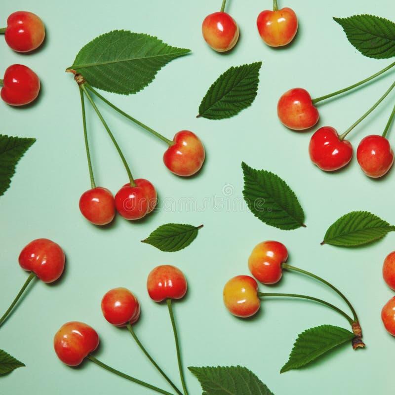 El modelo creativo del verano de cerezas y del verde se va en una luz fotos de archivo