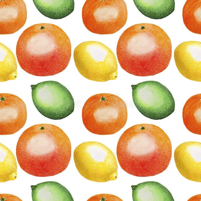 El modelo da fruto la materia textil de papel de Digitaces del limón de la fruta cítrica de la cal de la acuarela del ejemplo de  stock de ilustración