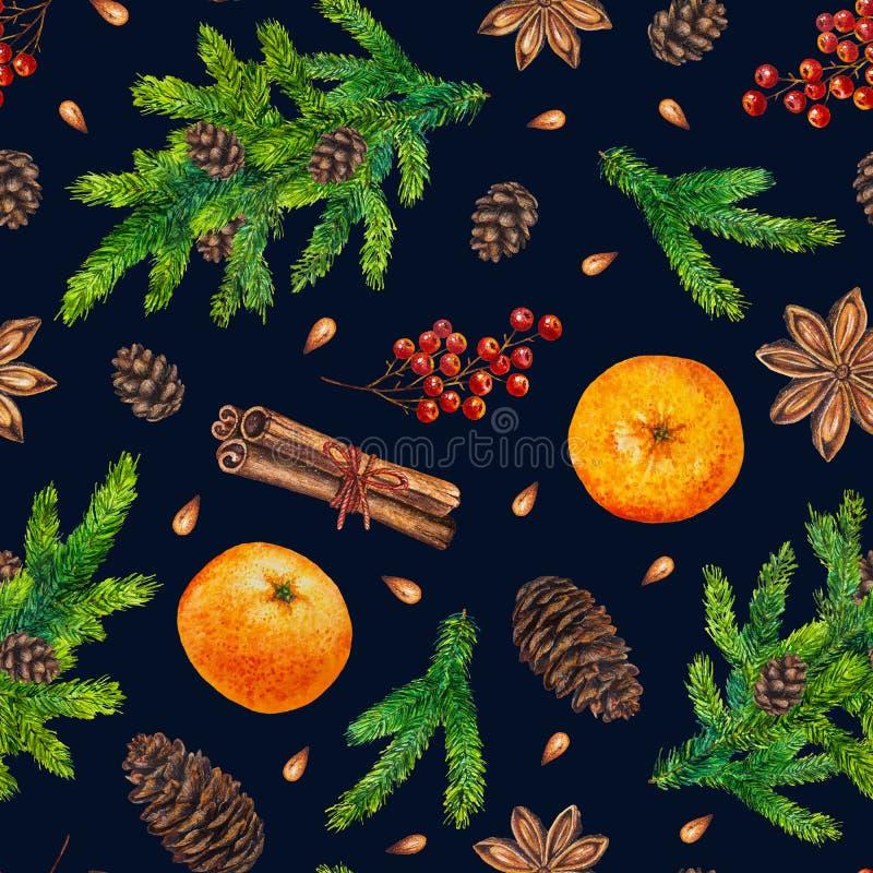 El modelo de la Navidad de la acuarela con el abeto ramifica, las bayas rojas, conos libre illustration